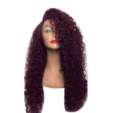 USA Long Full Wavy Front Lace Wig Afro Kinky Curly Natural Hair Wigs Women Black