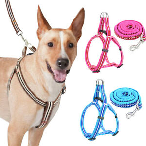 Reflective Step In Dog Harness and Leash Set Adjustable Small Large Vest Pitbull