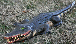 Fake Alligator Prop 4 Feet Long Crocodile Swamp Halloween Decoration
