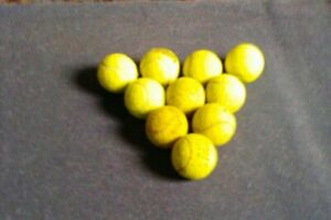 10  Assorted Used Tennis Balls for Dog Toys