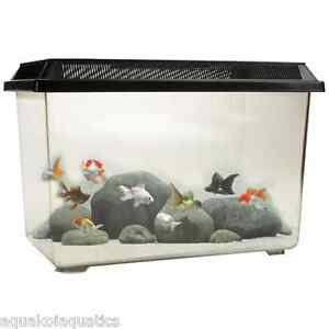 PT068 Goldfish 12L Starter Fish Tank Tropical Aquarium Breeding Clear 12 Litres