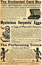 1934 Print Ad of The Performing Coons Sambo & Dinah Black Americana Serpent Eggs
