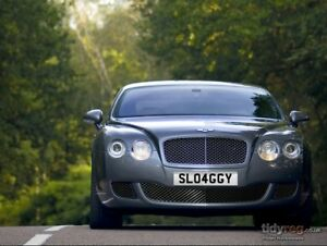Cherished number SL04GGY  SLOGGY SLAGGY Rude Funny Plate