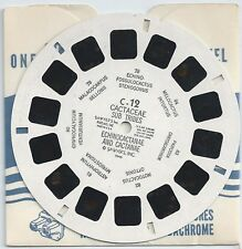 C-12 Cactaceae Sub Tribes View-master Reel from Cactus and Succulents Set