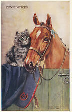 Riding Hack And Persian Cat - Vintage A/S Mabel Gear Horse Postcard - So Cute!