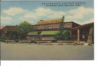 CA-221 CA, San Diego Halleman's Cotton Patch Restaurant Linen Postcard Exterior