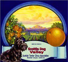 Marshall Scottish Terrier Dog Scottie Orange Citrus Fruit Crate Label Art Print
