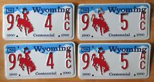 Wyoming 1988 BIG HORN COUNTY CONSECUTIVE NUMBER License Plate PAIRS - SUPERB
