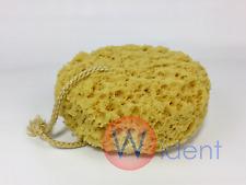 "Natural Sea Sponge Body Bath Foam 5"""