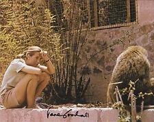 JANE GOODALL CHIMPANZEE ANTHROPOLOGIST SIGNED 8 x 10 PHOTO W/ COA CHIMPS