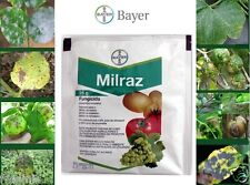 Bayer - Fungicide Fruit Tree Vegetable - Disease Control - 35g (make 20L)