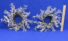 Pair Wreaths Christmas Winter Decor Snow Ice Crystal Covered White Grape Vine