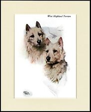 WESTIE WEST HIGHLAND WHITE TERRIER DOGS HEAD STUDY DOG PRINT READY TO FRAME