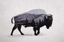 UNIQUE HIPSTER GIFT AMERICAN BISON ART PRINT buffalo nature forest 15x10 poster