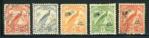 NEW GUINEA Bird of Paradise Selections: Small Assortment #1 - SEE SCAN - $$$
