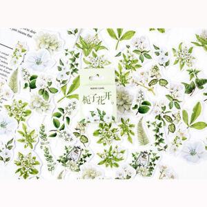 Set of 46 Pretty Green & White Floral Vintage Flower Scrapbook Mini Box Stickers