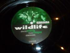 """Wildlife-vida útil - 1998 Reino Unido 2-track 12"""" SINGLE VINILO"""