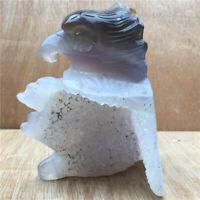 Natural Geode Agate quartz eagle skull hand Carved crystal KK396-YH