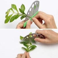 Durable Kale Chard Collard Greens Herb Stripper Looseleaf Kitchen Tools Graters