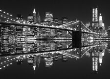Murale Parete Skyline New York City Foto Carta Da Parati Cityscape Black & White LARGE