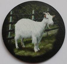 Goat - Coaster - Welsh Slate