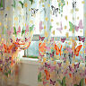 Butterfly Print Sheer Panel Window Curtain Balcony Tulle Room Divider Multicolor