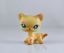 Littlest Pet Shop short hair cat LPS255 toys original kitty EUROPEAN
