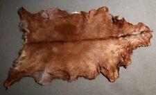 GOAT Western taxidermy Hide Rug Natural Pattern Fur Goat Hide Rode CC-2860