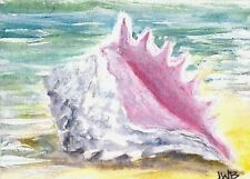 ACEO Original Art Painting Acrylic, Sea Shells, Ocean, Summer Beach Conch Shell