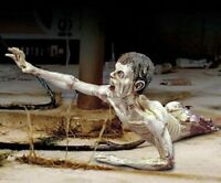 1/35 Resin Crawling Zombie Unpainted Unassembled BL615