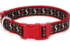 Douglas Paquette HOLLYWOOF Nylon Ribbon Adjustable Dog Collar, Harness