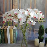 Beautiful Artificial Butterfly Orchid Silk Flower Phalaenopsis Bouquet Decor