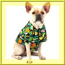 Top Paw Hawaiian Button Up Dog Shirt Lime Orange Black Fruit Small