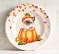 Set of 4 Pier 1 CAT in PUMPKIN  Salad Plate Gray White Kitten Fall Halloween NWT
