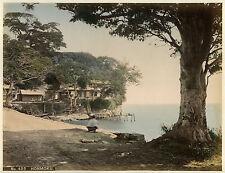 Colour 1890s Collectable Antique Photographs (Pre-1940)