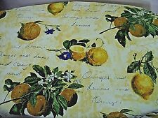 Lined 2 Curtains HandMade French Country Lemon Fruit, Floral Writing Pattern
