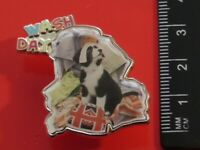 Danbury Mint Border Collie Dog Pin Badge Wash Day Design Dogs