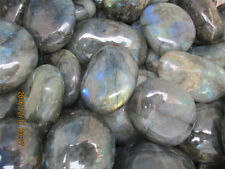 WHOLESALE PRICE!1lb 460g TOP NATURAL Labradorite Crystal Stone Original