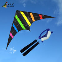 New 1.6m 63in Dual Line Stunt Kite Outdoor fun Sport Toys for Beginner delta