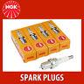 NGK CR8EB (7784) - Standard Spark Plug - Fits Piaggio & Vespa - 4 Pack