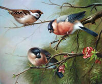 Oil painting nice three birds on branch with spring flowers free shipping cost