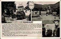 Lambrecht Pfalz s/w Mehrbild AK ~1950/60 gelaufen Kirchplatz Dorfpartie Geißbock