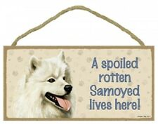 SAMOYED---A Spoiled Rotten SAMOYED  Lives Here Wood SIGN/PLAQUE 5X10