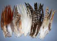 "100 MIXED Coque FEATHERS 5-10"" New Grizzly-Coque-Saddle Mixed; Hair Extensions"