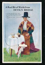 Wales Cardiganshire DEVIL'S BRIDGE Welsh lady Pocket Novelty c1940/50s PPC