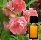 Lavendel Öl 100 ml 100 % reines ätherisches Öl Sonderpreis  nur 13 Stück