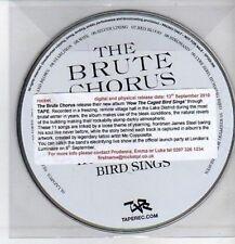 (CQ38) The Brute Chorus, How The Caged Bird Sings - 2010 DJ CD