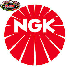 Candela IRIDIUM NGK BR9EIX FANTIC Cross 125 cc