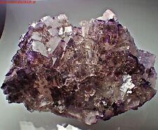 WOW great FLUORIT crystal Specimen FLuorit MELCHOR MUZQUIZ Coahuila Mexiko  ze