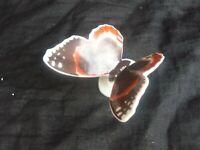 Scheibe Alsbach Porzellanfigur Admiral Schmetterling Porcelain Figure Butterfly